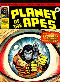 reflection-planetofapes66