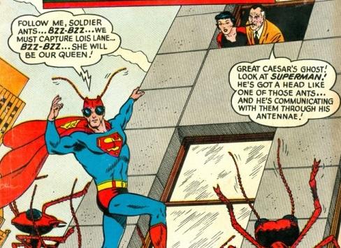 superman-ants