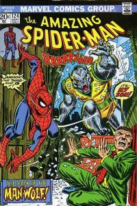 window-amazingspiderman124