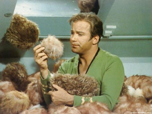 startrek-troublewithtribbles
